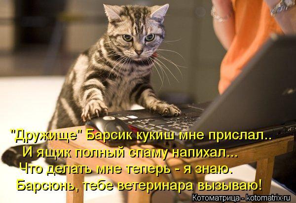 """Котоматрица: И ящик полный спаму напихал... Барсюнь, тебе ветеринара вызываю! Что делать мне теперь - я знаю. """"Дружище"""" Барсик кукиш мне прислал.."""