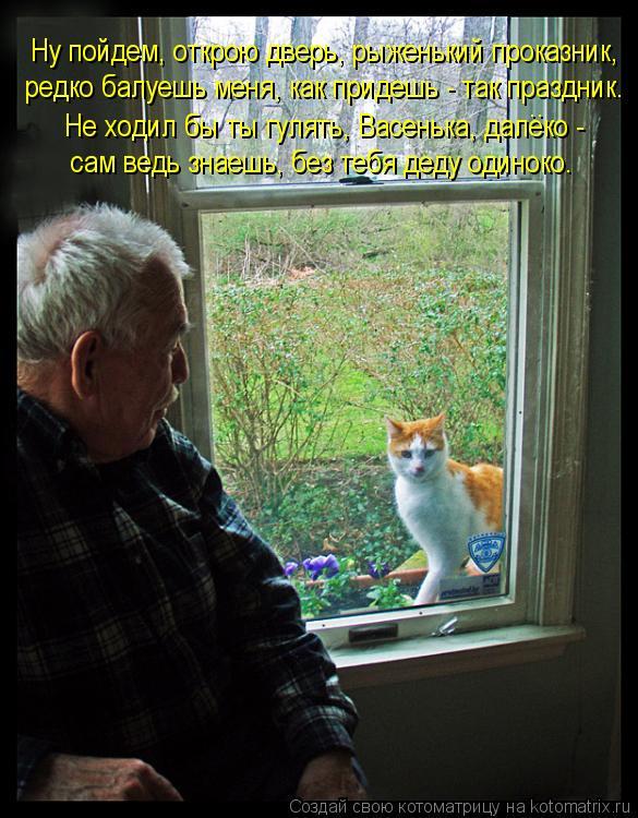 Котоматрица: Ну пойдем, открою дверь, рыженький проказник, Не ходил бы ты гулять, Васенька, далеко -  сам ведь знаешь, без тебя деду одиноко. редко балуешь