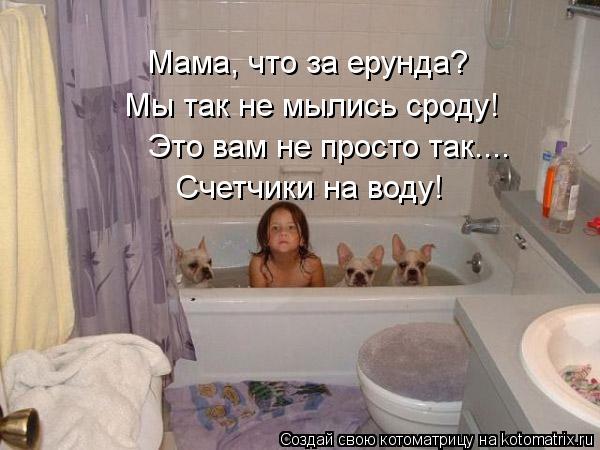 Котоматрица: Мама, что за ерунда? Мы так не мылись сроду! Это вам не просто так.... Счетчики на воду!