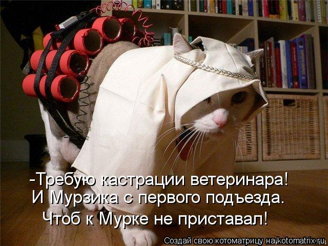 Котоматрица: И Мурзика с первого подъезда.  -Требую кастрации ветеринара!  Чтоб к Мурке не приставал!