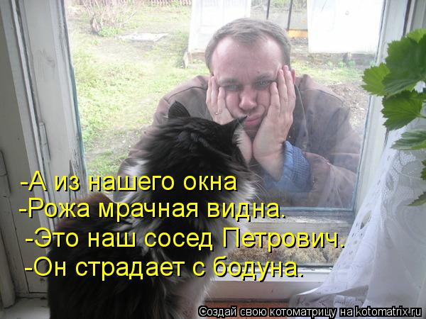 Котоматрица: -А из нашего окна  -Рожа мрачная видна.  -Это наш сосед Петрович.  -Он страдает с бодуна.