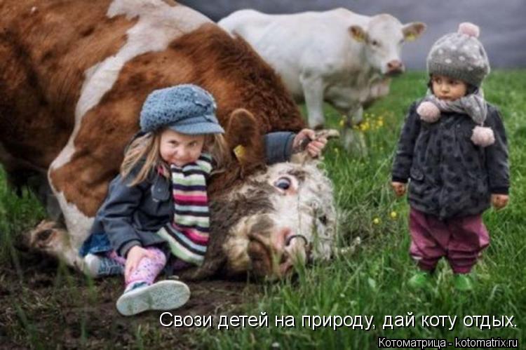 Котоматрица: Свози детей на природу, дай коту отдых.