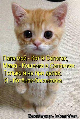 Котоматрица: Папа мой - Кот в Сапогах, Мама - Кошечка в Сапожках. Только я не при делах. Я - Котёнок-босоножка.