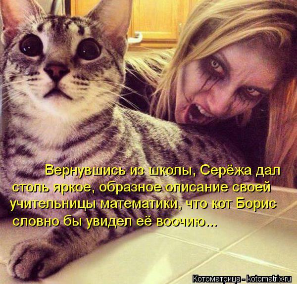 Котоматрица: Вернувшись из школы, Серёжа дал учительницы математики, что кот Борис словно бы увидел её воочию... столь яркое, образное описание своей