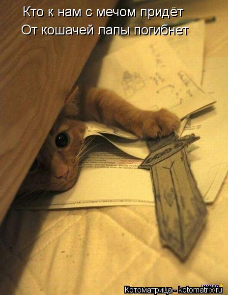 Котоматрица: Кто к нам с мечом придёт От кошачей лапы погибнет