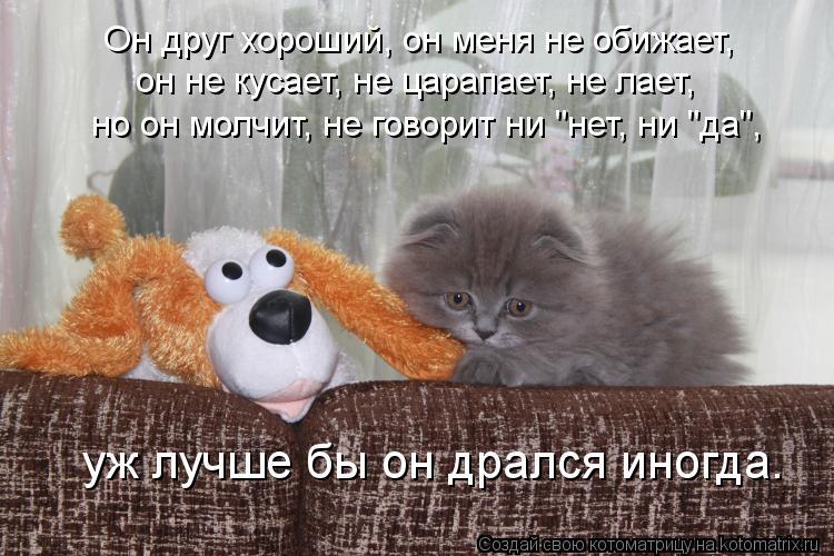 """Котоматрица: Он друг хороший, он меня не обижает, он не кусает, не царапает, не лает, но он молчит, не говорит ни """"нет, ни """"да"""", уж лучше бы он дрался иногда."""