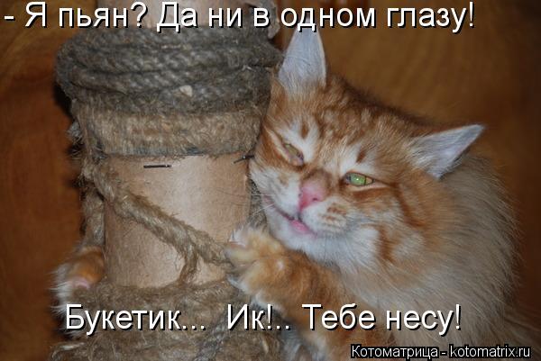 Котоматрица: - Я пьян? Да ни в одном глазу! Букетик...  Ик!.. Тебе несу!