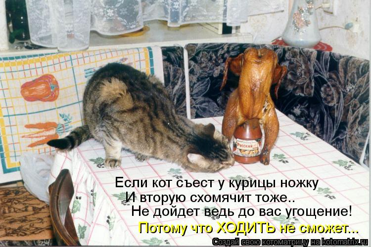 Котоматрица: Если кот съест у курицы ножку И вторую схомячит тоже.. Потому что ХОДИТЬ не сможет... Не дойдет ведь до вас угощение!
