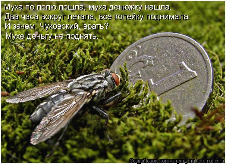 Котоматрица: Муха по полю пошла, муха денюжку нашла. Два часа вокруг летала, все копейку поднимала. И зачем, Чуковский, врать? Мухе деньгу не поднять.