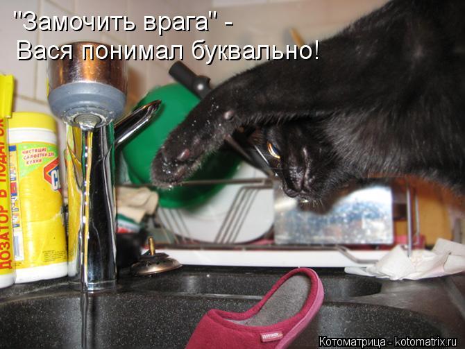 """Котоматрица: """"Замочить врага"""" - Вася понимал буквально!"""