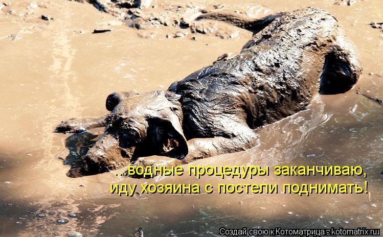 Котоматрица: ...водные процедуры заканчиваю, иду хозяина с постели поднимать!
