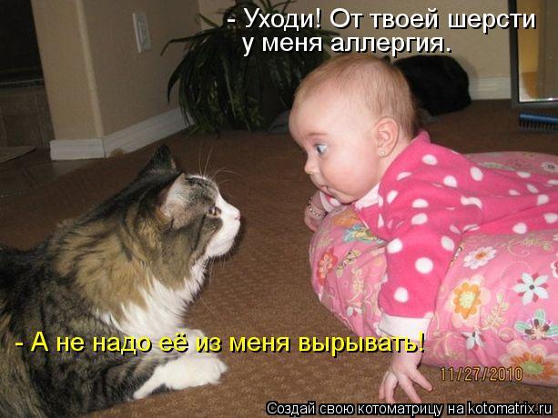 Котоматрица: - Уходи! От твоей шерсти у меня аллергия. - А не надо её из меня вырывать!