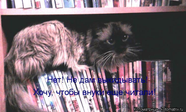 Котоматрица: Нет! Не дам выкидывать! Хочу, чтобы внуки еще читали!