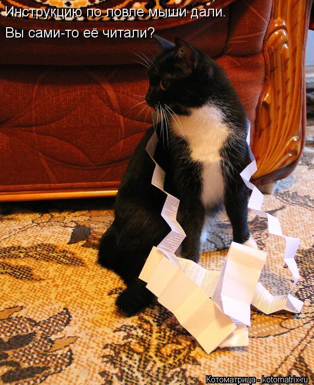 Котоматрица: Инструкцию по ловле мыши дали. Вы сами-то её читали?