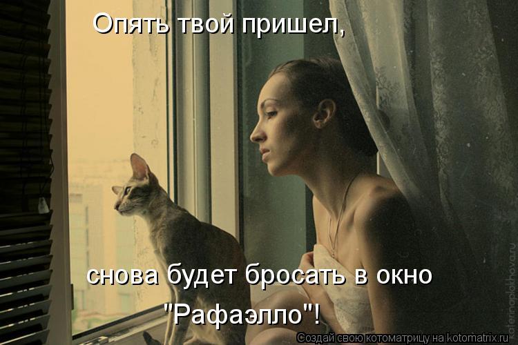 """Котоматрица: Опять твой пришел, снова будет бросать в окно """"Рафаэлло""""!"""