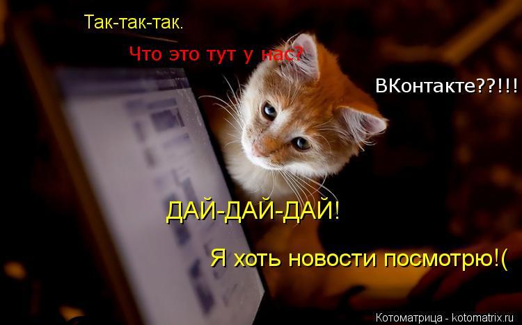 Котоматрица: Так-так-так.  Что это тут у нас? ВКонтакте??!!! ДАЙ-ДАЙ-ДАЙ! Я хоть новости посмотрю!(