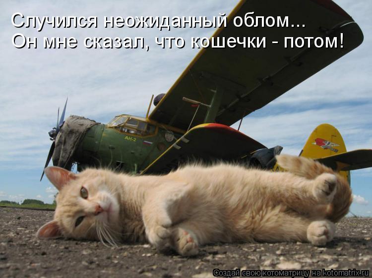 Котоматрица: Случился неожиданный облом... Он мне сказал, что кошечки - потом!