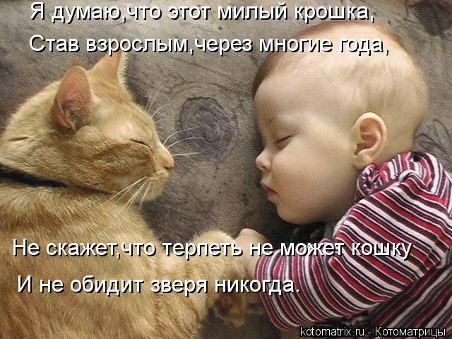 Котоматрица: Я думаю,что этот милый крошка, Став взрослым,через многие года, Не скажет,что терпеть не может кошку И не обидит зверя никогда.