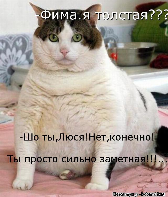 Котоматрица: -Фима.я толстая??? -Шо ты,Люся!Нет,конечно! Ты просто сильно заметная!!!...  -Шо ты,Люся!Нет,конечно! Ты просто сильно заметная!!!...  Ты просто сильн