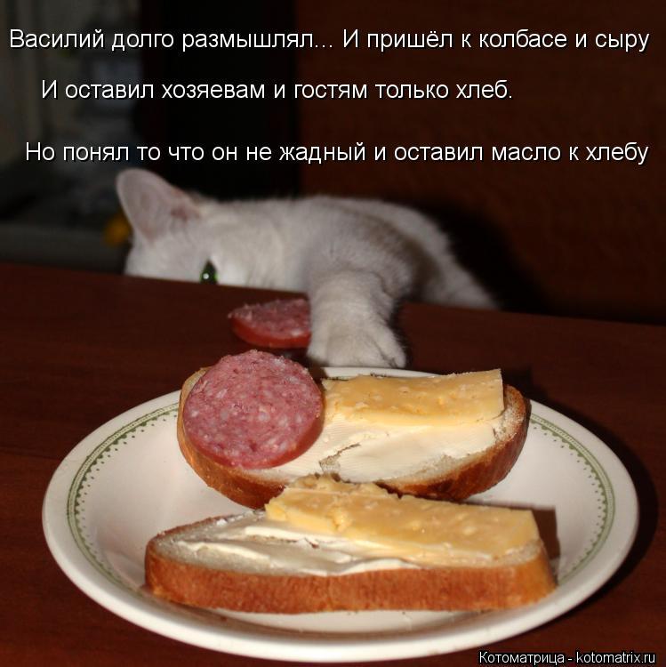 Котоматрица: Василий долго размышлял... И пришёл к колбасе и сыру И оставил хозяевам и гостям только хлеб. Но понял то что он не жадный и оставил масло к хл