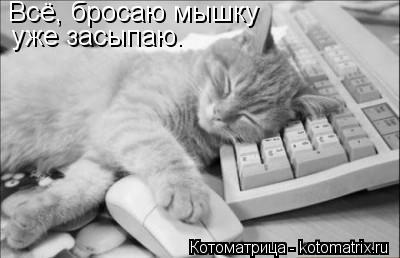 Котоматрица: Всё, бросаю мышку уже засыпаю.