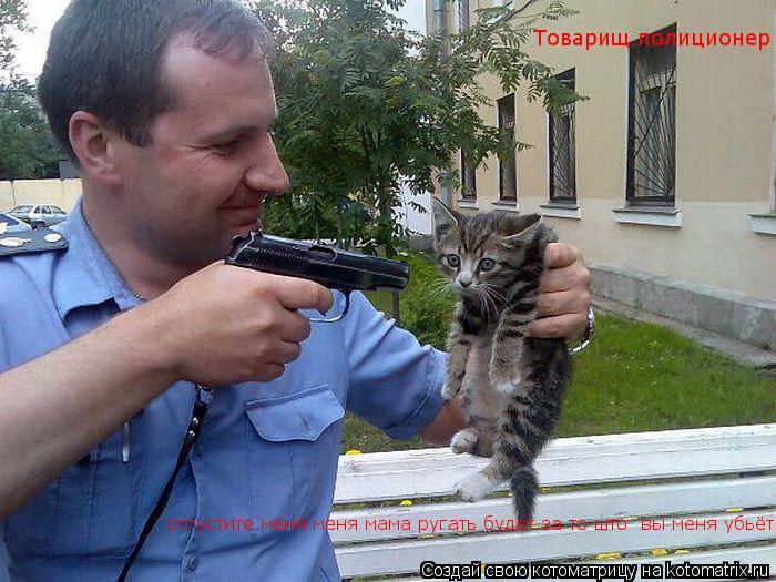 Котоматрица: Товарищ полиционер отпустите меня меня мама ругать будет за то што  вы меня убьёт