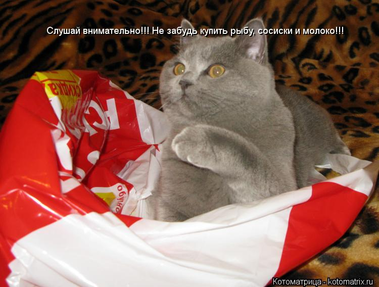 Котоматрица: Слушай внимательно!!! Не забудь купить рыбу, сосиски и молоко!!! Слушай внимательно!!! Не забудь купить рыбу, сосиски и молоко!!!