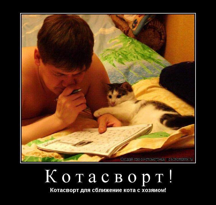 Котоматрица: Котасворт! Котасворт для сближение кота с хозяиом!