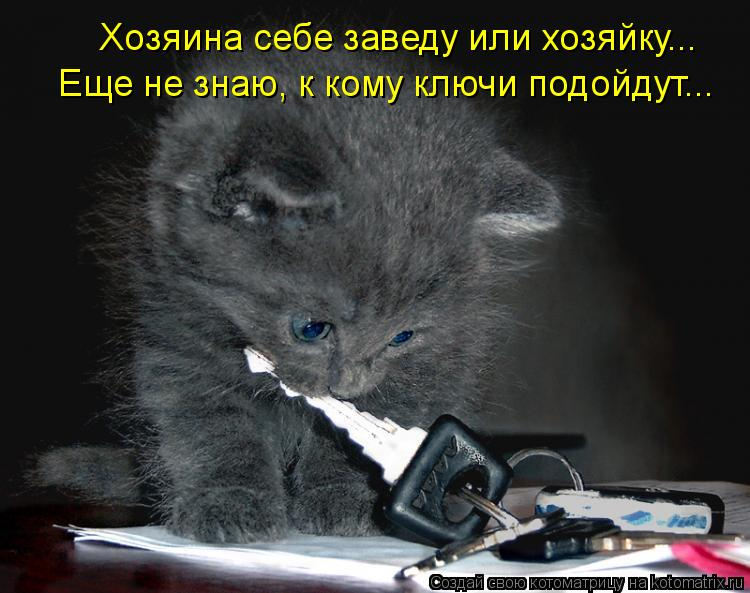 Котоматрица: Хозяина себе заведу или хозяйку... Еще не знаю, к кому ключи подойдут...