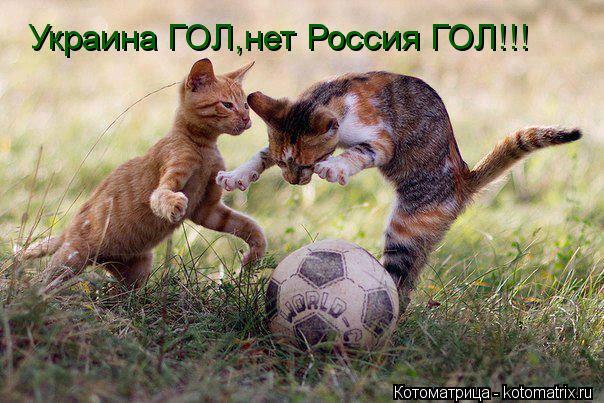 Котоматрица: Украина ГОЛ,нет Россия ГОЛ!!!