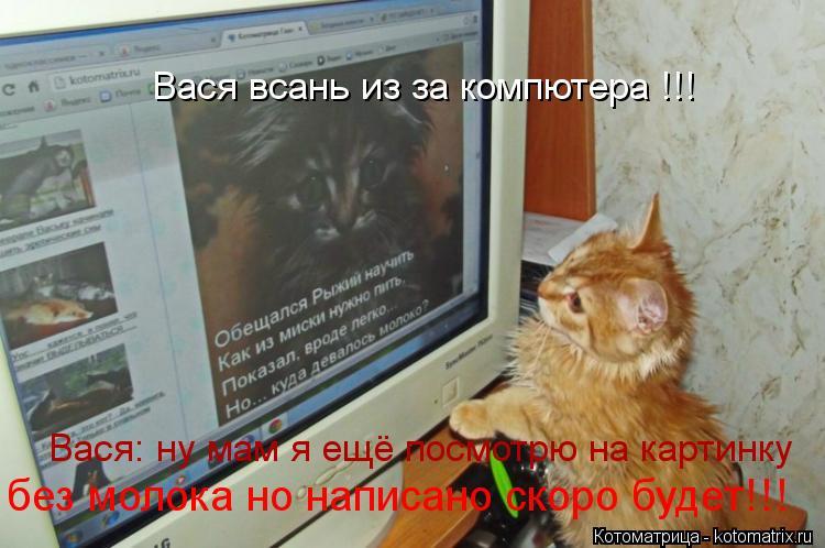 Котоматрица: Вася всань из за компютера !!! Вася: ну мам я ещё посмотрю на картинку без молока но написано скоро будет!!!