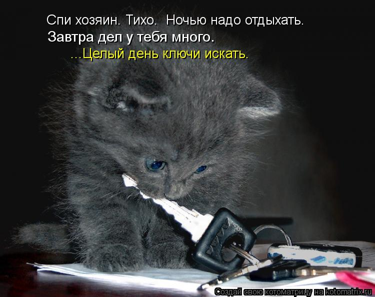 Котоматрица: Завтра дел у тебя много. ...Целый день ключи искать. Спи хозяин. Тихо.  Ночью надо отдыхать.