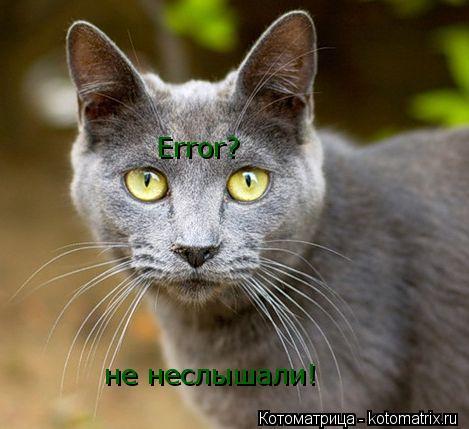 Котоматрица: Error? не неслышали!