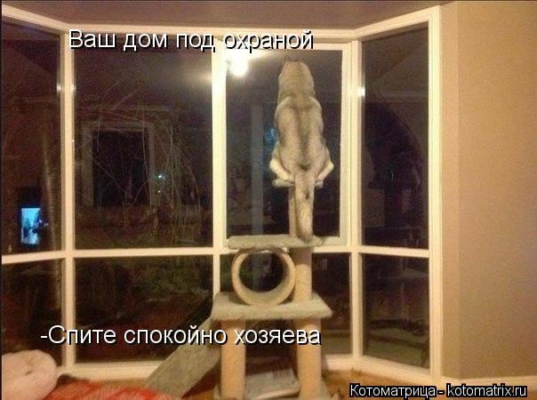 Котоматрица: Ваш дом под охраной -Спите спокойно хозяева