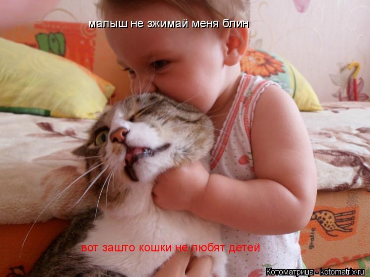 Котоматрица: малыш не зжимай меня блин  вот зашто кошки не любят детей