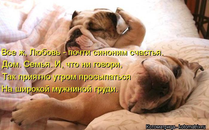 Котоматрица: Все ж, Любовь - почти синоним счастья. Дом. Семья. И, что ни говори, Так приятно утром просыпаться На широкой мужниной груди.