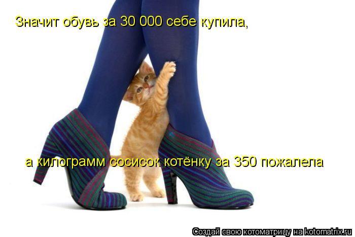 Котоматрица: Значит обувь за 30 000 себе купила, а килограмм сосисок котёнку за 350 пожалела