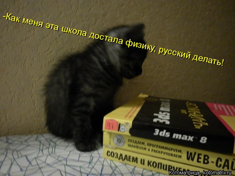 Котоматрица: -Как меня эта школа достала физику, русский делать!