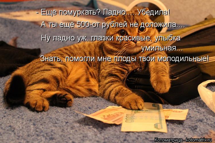 Котоматрица: Знать, помогли мне плоды твои молодильные! А ты ещё 500-от рублей не доложила.... - Ещё помуркать? Ладно.....Убедила! Ну ладно уж, глазки красивые,