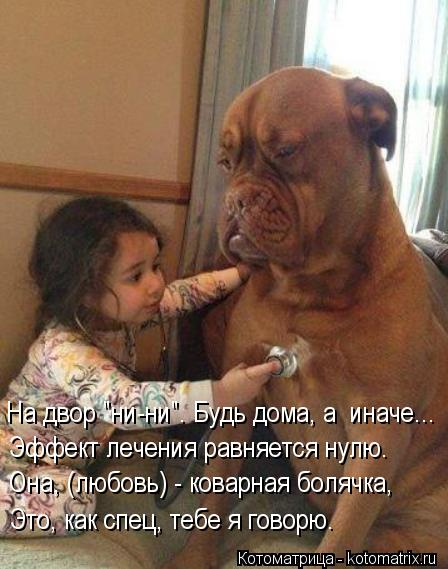 """Котоматрица: На двор """"ни-ни"""". Будь дома, а  иначе... Эффект лечения равняется нулю. Она, (любовь) - коварная болячка, Это, как спец, тебе я говорю."""