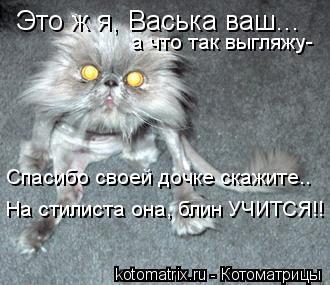 Котоматрица: Это ж я, Васька ваш... а что так выгляжу-  Спасибо своей дочке скажите.. На стилиста она, блин УЧИТСЯ!!