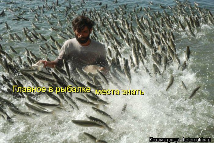 Котоматрица: Главное в рыбалке Главное в рыбалке места знать места знать