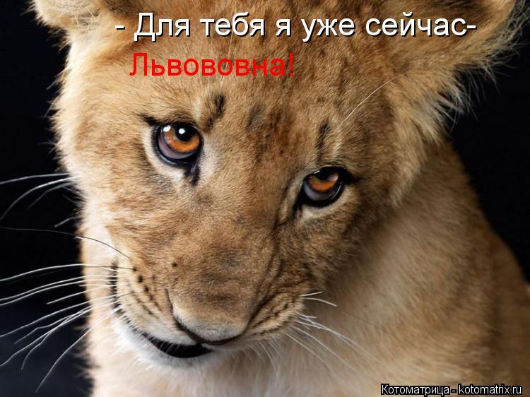 Котоматрица: - Для тебя я уже сейчас- Львововна!