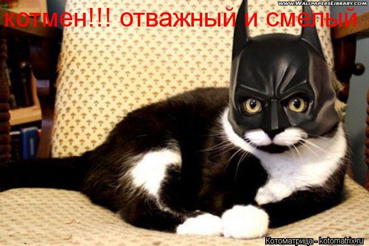 Котоматрица: котмен!!! отважный и смелый