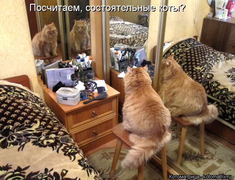 Котоматрица: Посчитаем, состоятельные коты?