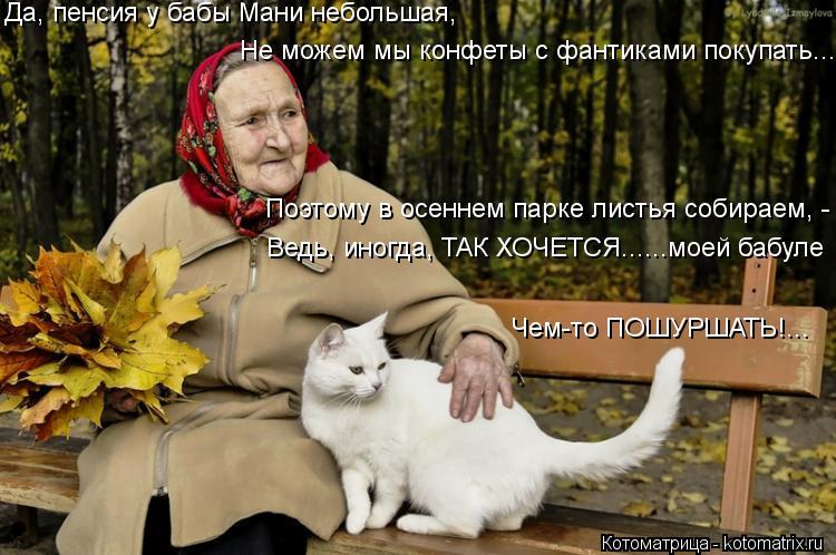 Котоматрица: Да, пенсия у бабы Мани небольшая, Не можем мы конфеты с фантиками покупать... Ведь, иногда, ТАК ХОЧЕТСЯ......моей бабуле Поэтому в осеннем парке
