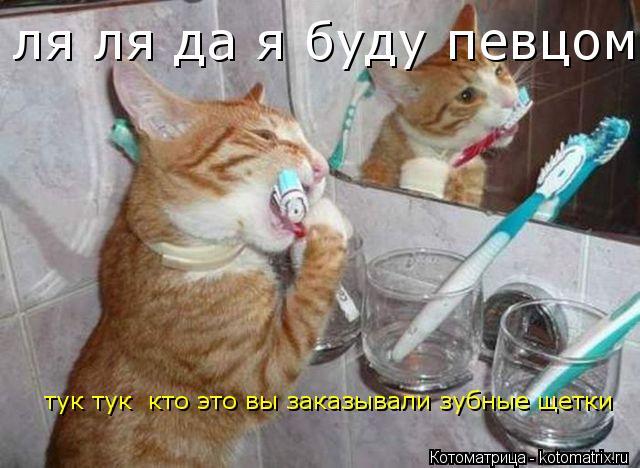 Котоматрица: ля ля да я буду певцом   тук тук  кто это вы заказывали зубные щетки