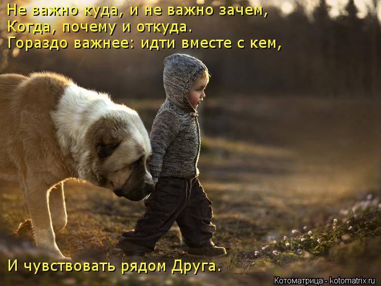 Котоматрица: Не важно куда, и не важно зачем, Когда, почему и откуда. Гораздо важнее: идти вместе с кем, И чувствовать рядом Друга.
