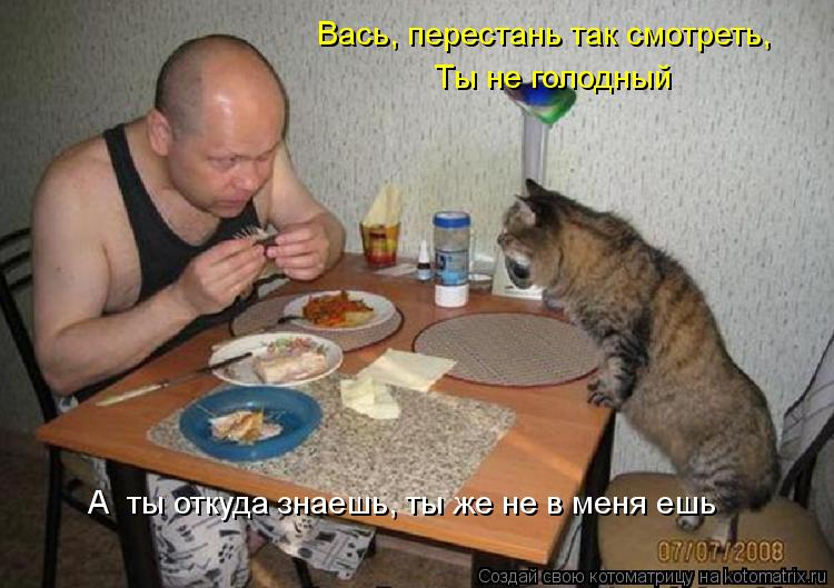 Котоматрица: Вась, перестань так смотреть, А  ты откуда знаешь, ты же не в меня ешь Ты не голодный