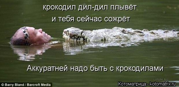 Котоматрица: крокодил дил-дил плывёт и тебя сейчас сожрёт Аккуратней надо быть с крокодилами